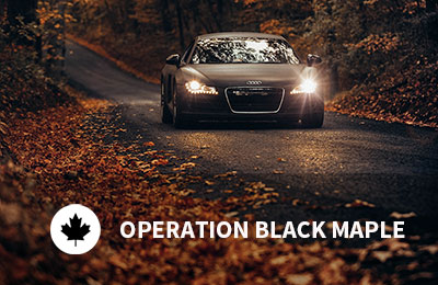 Operation Black Maple